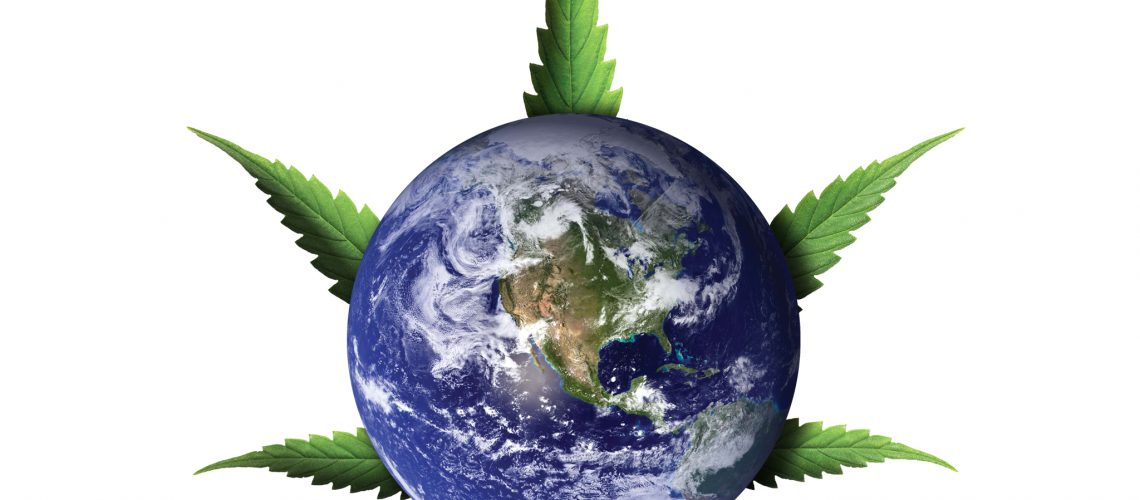 Hemp and Other Carbon Dioxide Reduction Strategies